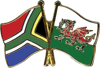 rugby coupe du monde 2015 South Africa Wales
